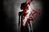 woman-silhouette-wallpaper-1 (800x522)